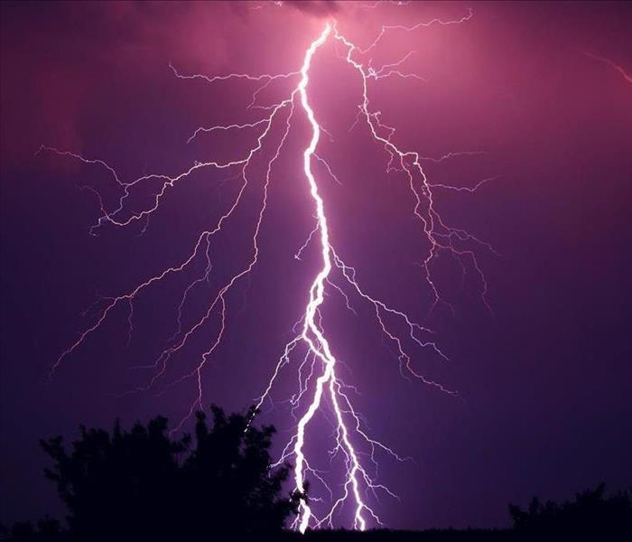 White lightning bolt in a purple sky with a tree in the background.