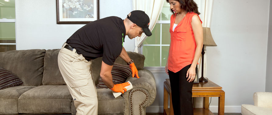 Wheaton, IL carpet upholstery cleaning