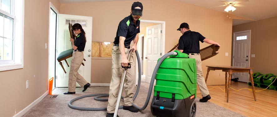 Wheaton, IL cleaning services